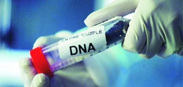 تحليل DNA