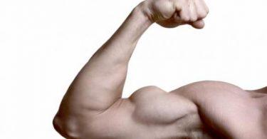 تمارين تقوية عضلات اليد